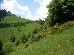Alpe Res di Fobello, Italy